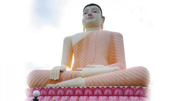Спокоен, как буддистский слон. Цейлон