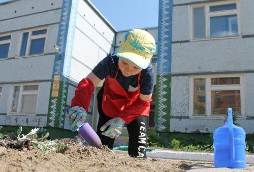 Усинские дошкольники подарили городу пять тысяч бархатцев