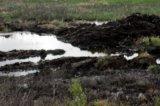 Не менее семи тонн нефти разлилось в Усинском районе
