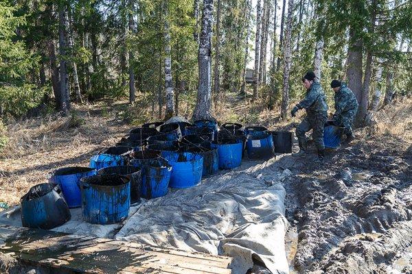 Глава «Лукойла» прокомментировал разлив нефти в Коми