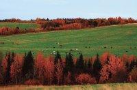 «Арктический» гектар: бесплатные земельные участки для строительства жилого дома или ведения экономической деятельности