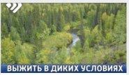 Пропавший в лесу под Усинском мужчина рассказал, как ему удалось выжить в диких условиях (видео)